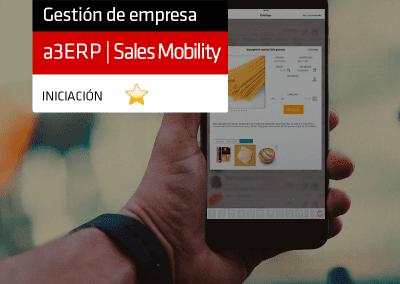 Gestión comercial en cualquier sitio con a3ERP | Sales mobility